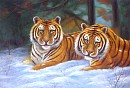 Tiger Paintings